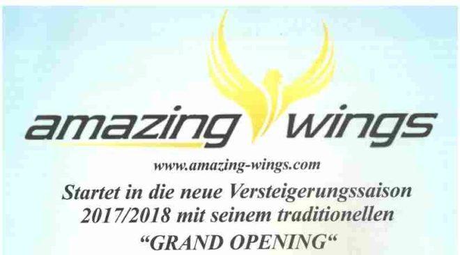 amazing-wings startet in die neue Versteigerungssaison 2017/2018...