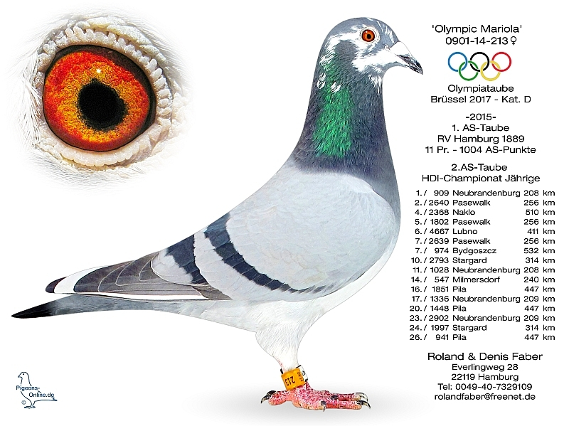 法贝尔奥运MARIOLA 0901-14-213