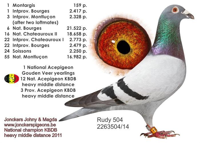 jonckers rudy504