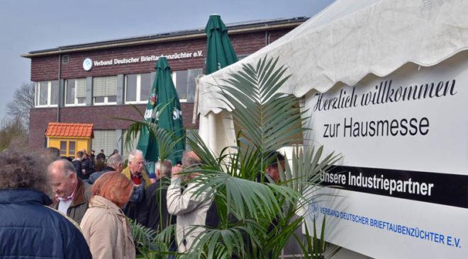 Hausmesse und Jungtauben-Börse am 24. März 2018...