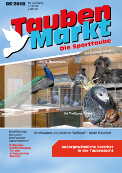 mai Tytuł rynek gołąb 2018