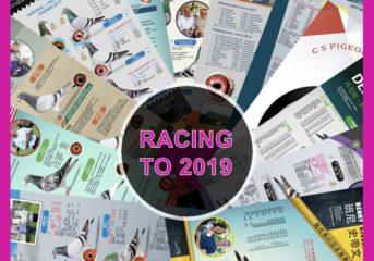 "Einladung zur Teilnahme an ""Racing to 2019""..."