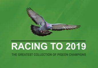 HERBOTS Racing to 2019 - die grösste Champions-Kollektion...