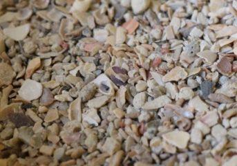 Mineralstoffe u. Spurenelemente - von Peter Klaus...