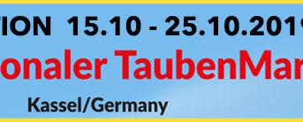 Auktion: Championsleague des Taubensports...