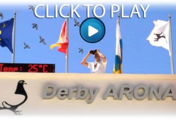 Derby ARONA 2021 - Hotspot 1 Survival Race Movie...