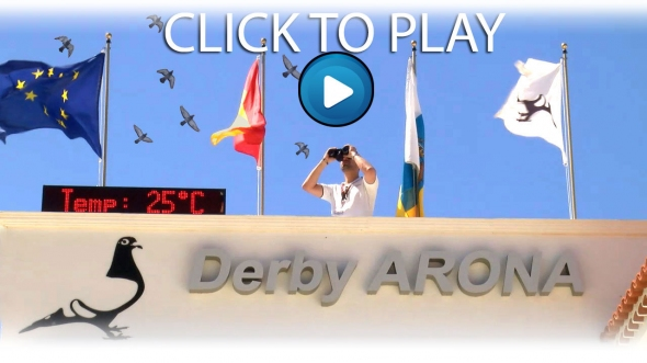 Derby ARONA 2021 - Hotspot 1 Survival Race Movie...